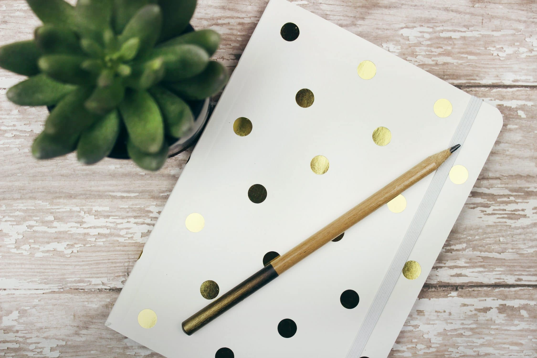 White and Gold poka-dot journal with pencil on top